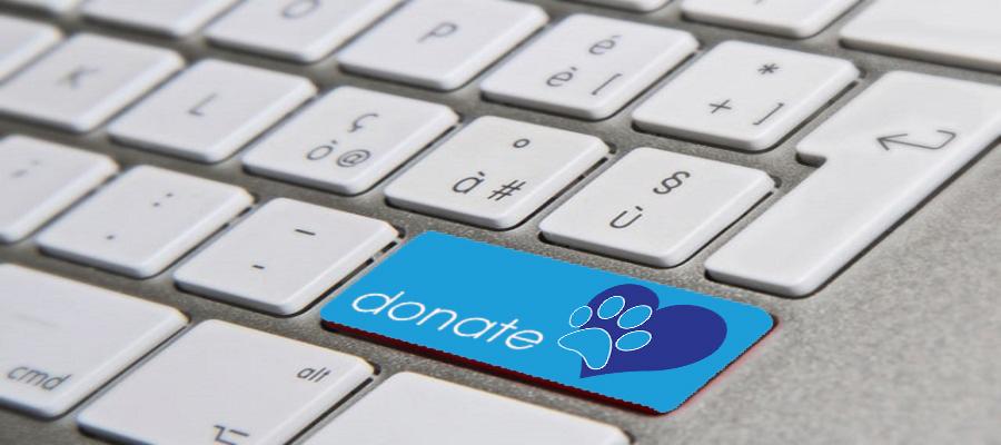 donazione-Copia